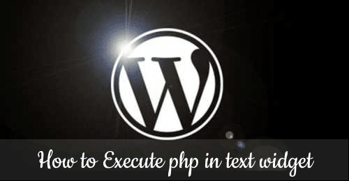 Allow PHP in WordPress default text widget